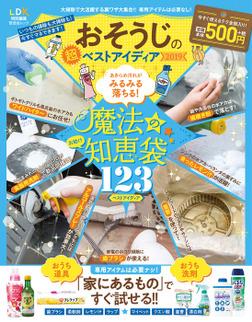晋遊舎ムック おそうじの超ベストアイディア2019-電子書籍