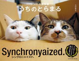シンクロ姉妹猫 うちのとらまる-電子書籍