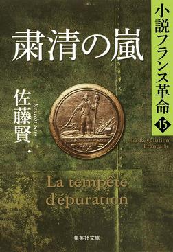 粛清の嵐 小説フランス革命15-電子書籍