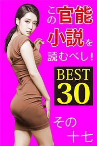 この官能小説を読むべし! BEST30 その十七