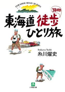 東海道徒歩38日間ひとり旅(小学館文庫)-電子書籍