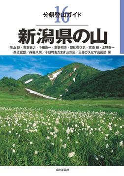 分県登山ガイド 16 新潟県の山-電子書籍