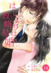 comic Berry's はじまりは政略結婚 14巻