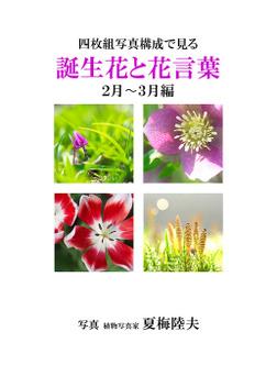 四枚組写真構成で見る誕生花と花言葉2~3月編-電子書籍