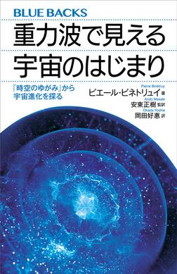 重力波で見える宇宙のはじまり 「時空のゆがみ」から宇宙進化を探る-電子書籍