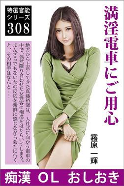 満淫電車にご用心-電子書籍