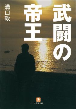 武闘の帝王-電子書籍