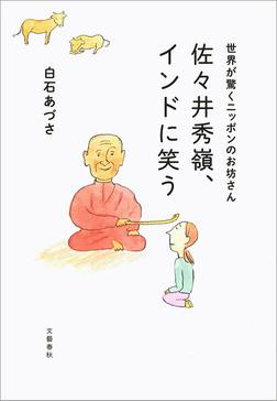 世界が驚くニッポンのお坊さん 佐々井秀嶺、インドに笑う-電子書籍
