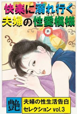 快楽に溺れ行く夫婦の性愛模様 ~夫婦の性生活告白セレクションvol.3~-電子書籍