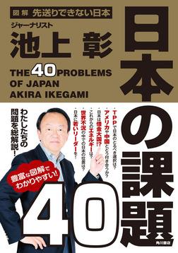 図解 先送りできない日本 日本の課題40-電子書籍