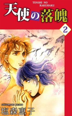 天使の落魄 2-電子書籍