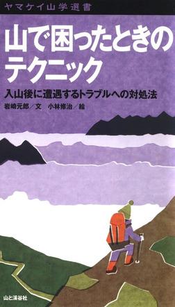 ヤマケイ山学選書 山で困ったときのテクニック-電子書籍