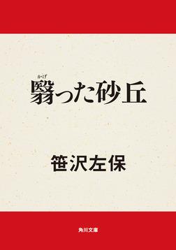 翳った砂丘-電子書籍