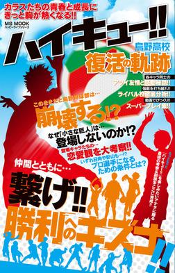 ハイキュー!! 烏野高校復活の軌跡-電子書籍