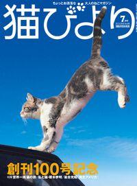猫びより2018年7月号 Vol.100