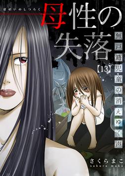 母性の失落~無戸籍児童の消えゆく声(13)-電子書籍