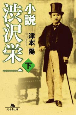 小説 渋沢栄一(下)-電子書籍