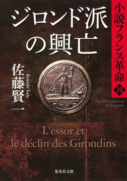 ジロンド派の興亡 小説フランス革命 10-電子書籍