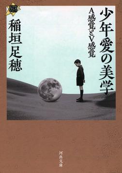 少年愛の美学 A感覚とV感覚-電子書籍
