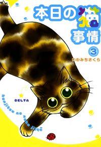本日の猫事情 (3)