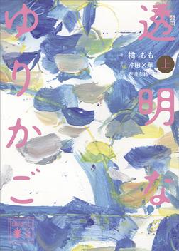 小説 透明なゆりかご (上)-電子書籍