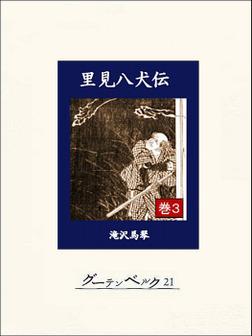 里見八犬伝 巻3-電子書籍
