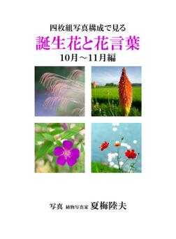 四枚組写真構成で見る誕生花と花言葉10~11月編-電子書籍