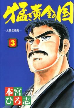 猛き黄金の国 岩崎弥太郎 第3巻-電子書籍
