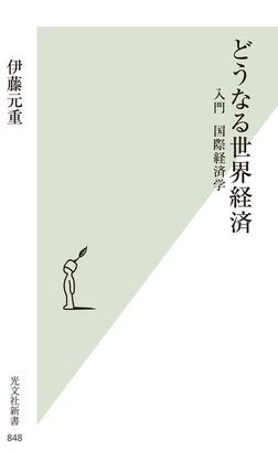 どうなる世界経済~入門 国際経済学~-電子書籍