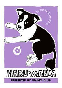 HARU MANIA 紫