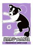 HARU MANIA