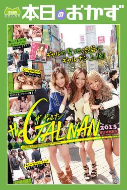 the GALNAN ザ・ギャルナン 2013SUMMER 本日のおかず-電子書籍