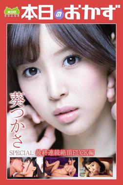 葵つかさSPECIAL 最終連続絶頂FUCK編 本日のおかず-電子書籍