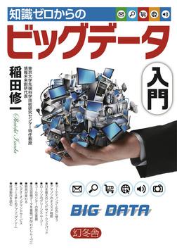 知識ゼロからのビッグデータ入門-電子書籍