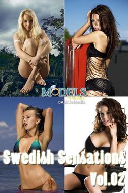 Swedish Sensations vol.02-電子書籍