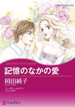 記憶のなかの愛-電子書籍