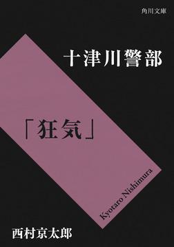 十津川警部「狂気」-電子書籍