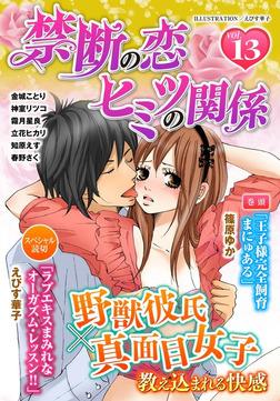 禁断の恋 ヒミツの関係 vol.13-電子書籍