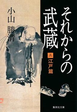 それからの武蔵(三)江戸篇-電子書籍