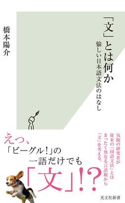 「文」とは何か~愉しい日本語文法のはなし~-電子書籍