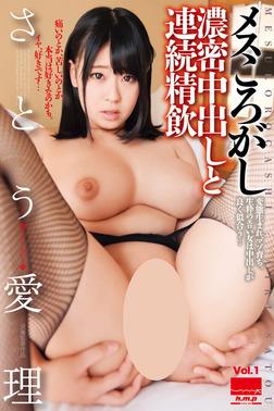 【巨乳】メスころがし Vol.1 / さとう愛理-電子書籍