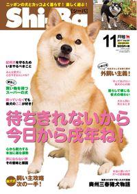 Shi-Ba 2017年11月号 Vol.97
