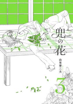 兜の花(3)【電子限定特典ペーパー付き】-電子書籍