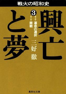興亡と夢 3-電子書籍