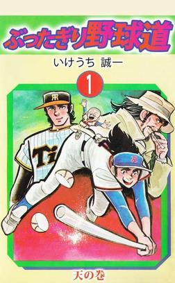 ぶったぎり野球道(1)-電子書籍