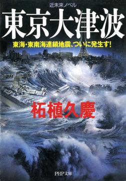 近未来ノベル 東京大津波 東海・東南海連鎖地震、ついに発生す!-電子書籍