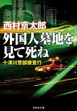 外国人墓地を見て死ね――十津川警部捜査行-電子書籍