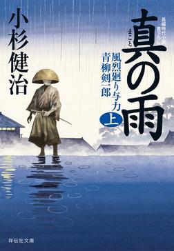 真の雨(上)-電子書籍
