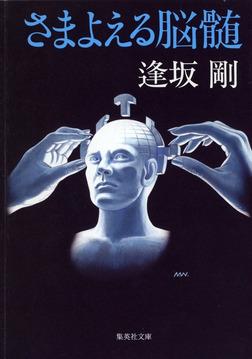 さまよえる脳髄-電子書籍