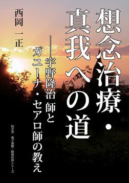 想念治療・真我実現への道――宇野隆治師とガユーナセアロ師の教え-電子書籍